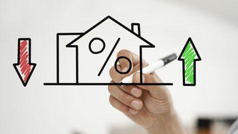 La crescita dei prestiti